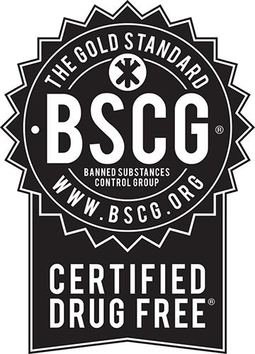 BSCG Logo