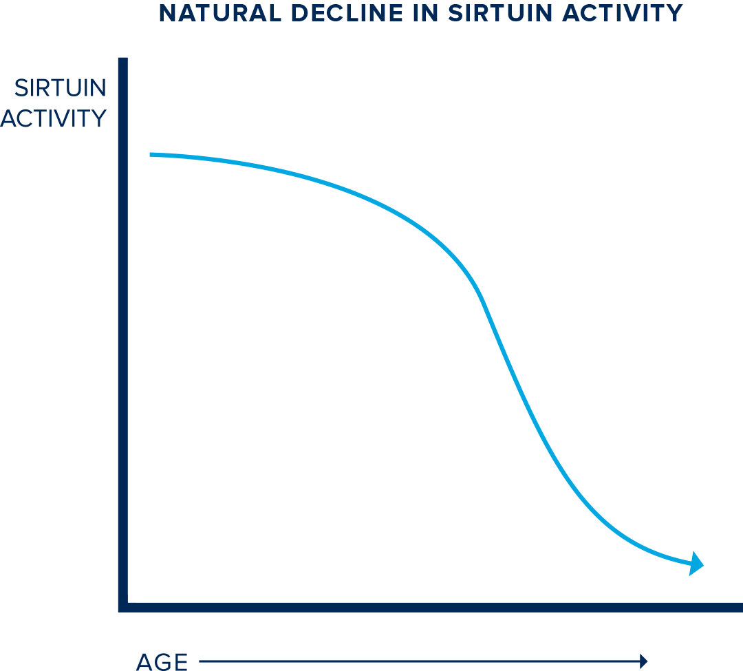 Graph showing how sirtuin naturally declines with age